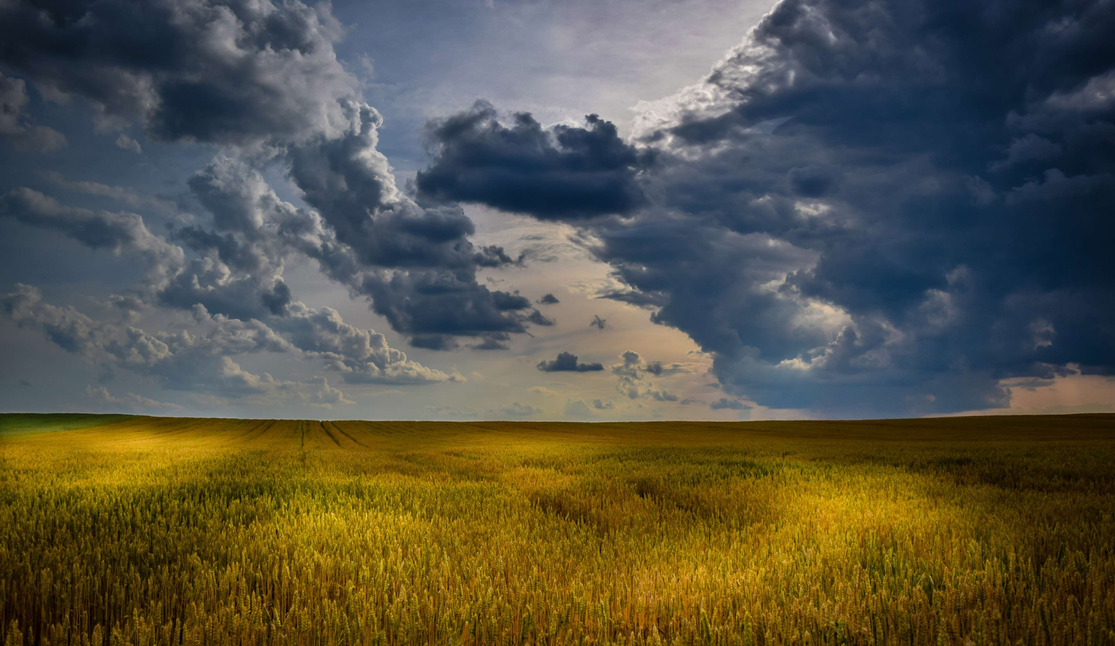 3840x2227-3072793-agriculture_cloudscape_cloudy-skies_countryside_crop_cropland_farm_farming_field_harvest_landscape_light-and-shadow_nature_outdoors_pasture_plains_rural_sky_sunlight_sunset_wheat_yellow