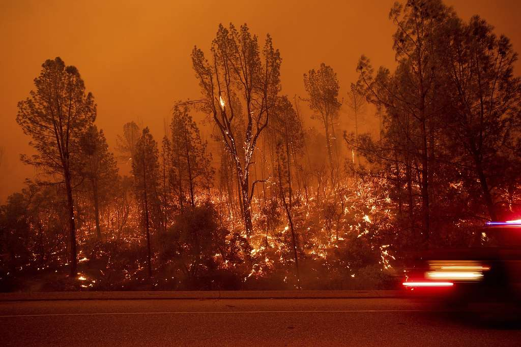 Carr Fire (Courtesy of Noah Berger/ AP)