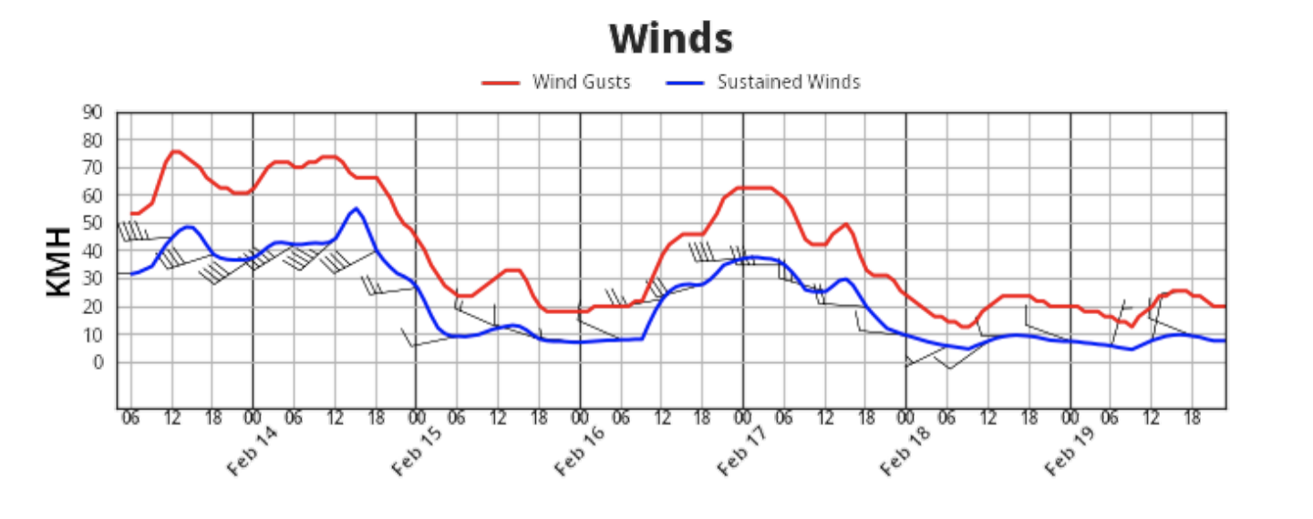 WeatherOps Olympic Wind Forecast Graph