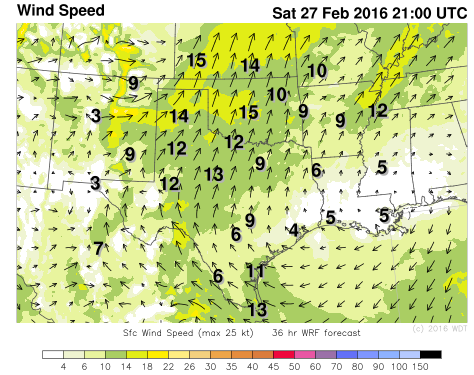 WDT WRF Surface Winds 3pm CST Sunday