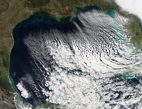 Cloud streets in the Gulf of Mexico in the wake of a cold front, formed by cold and dry air flowing across the warmer waters of the Gulf (Courtesy: MODIS/noaa.gov)