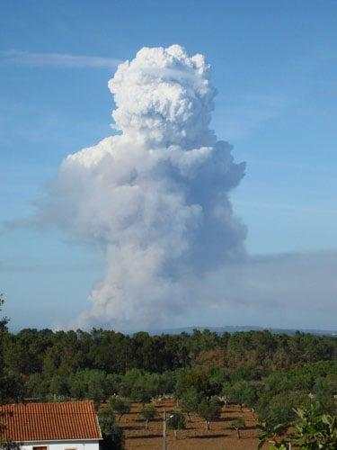 Flammagenitus- Pyrocumulus (credit: Jan Knight)