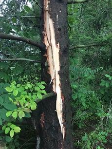 US Open Lightning Damage
