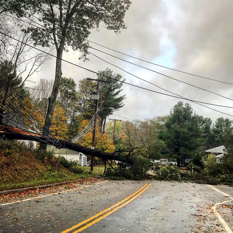 Trees Taking Down Power Lines Due to Wind - October 30, 2017