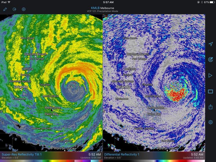 Birds Caught in Hurricane Matthew on RadarScope