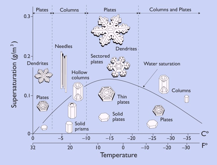 The Shapes of Snowflakes (Credit: Kenneth Libbrecht)