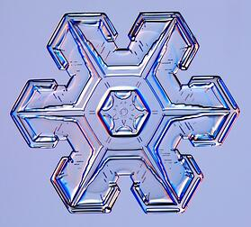 Plate Snowflake (credit: http://www.its.caltech.edu/)