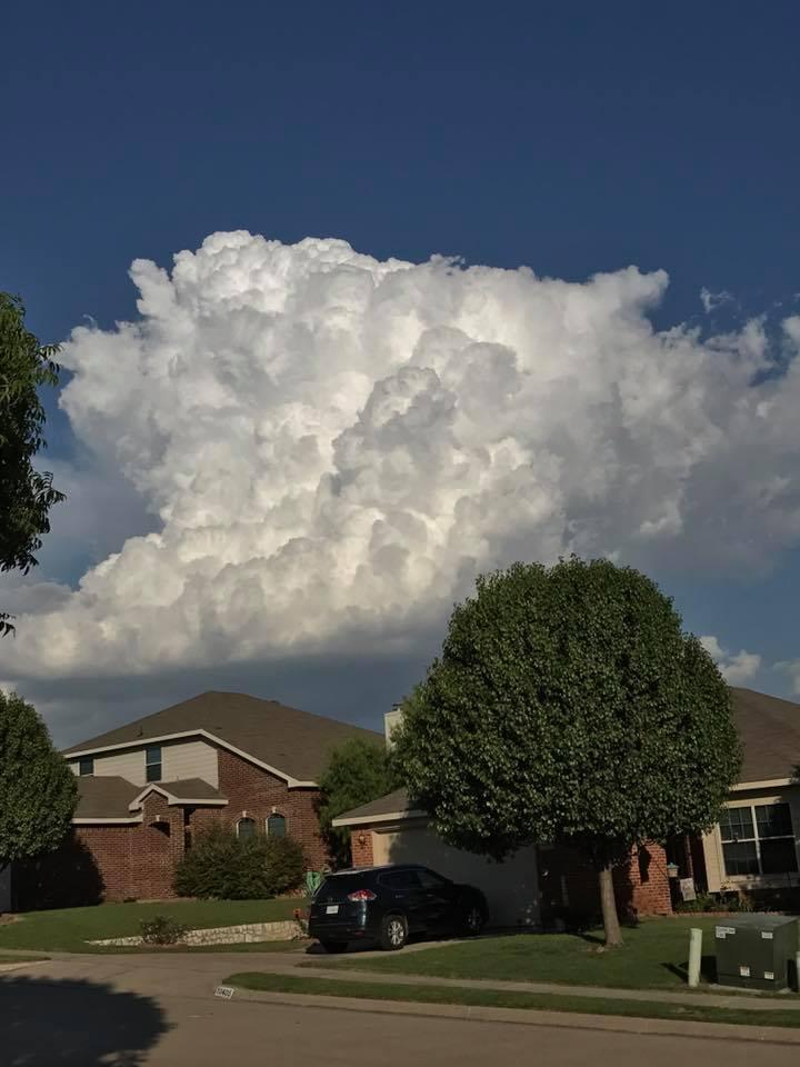 Cumulous Cloud