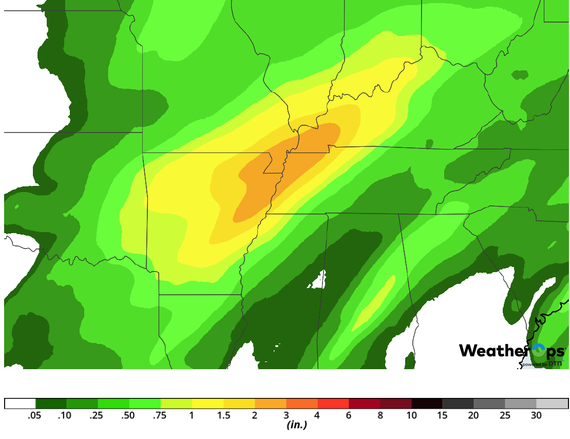 Rainfall Accumulation for Monday, February 11, 2019