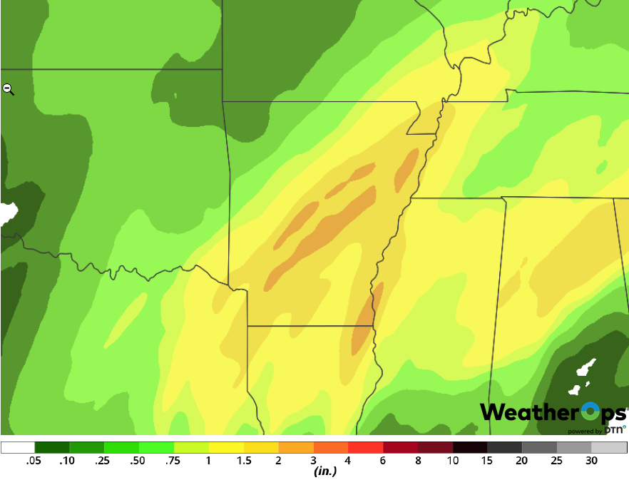 Rainfall Accumulation for Tuesday, February 19, 2019
