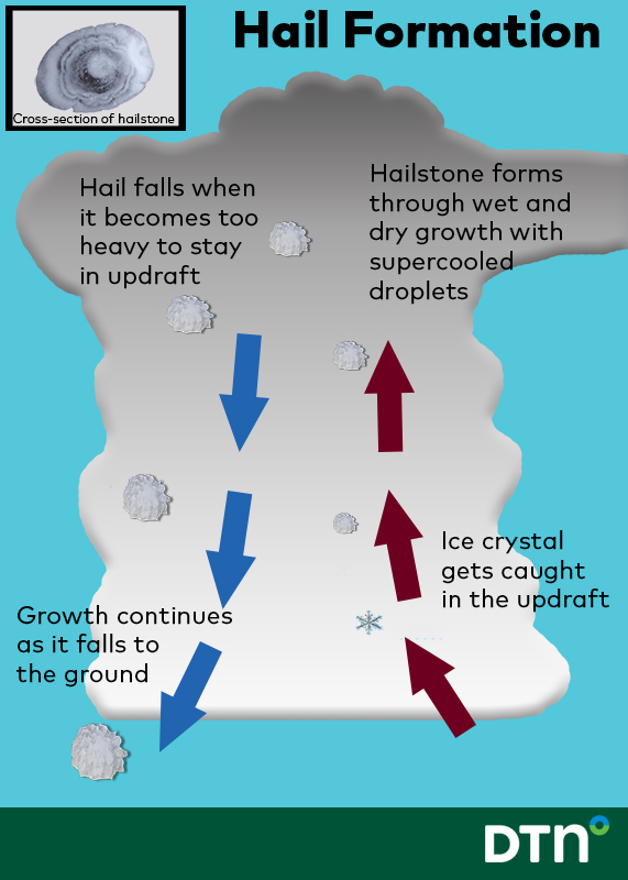 How Hail Forms