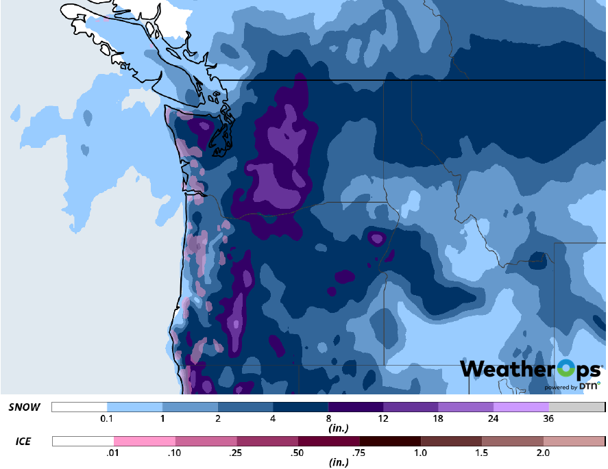 Snow Accumulation for February 8-9, 2019