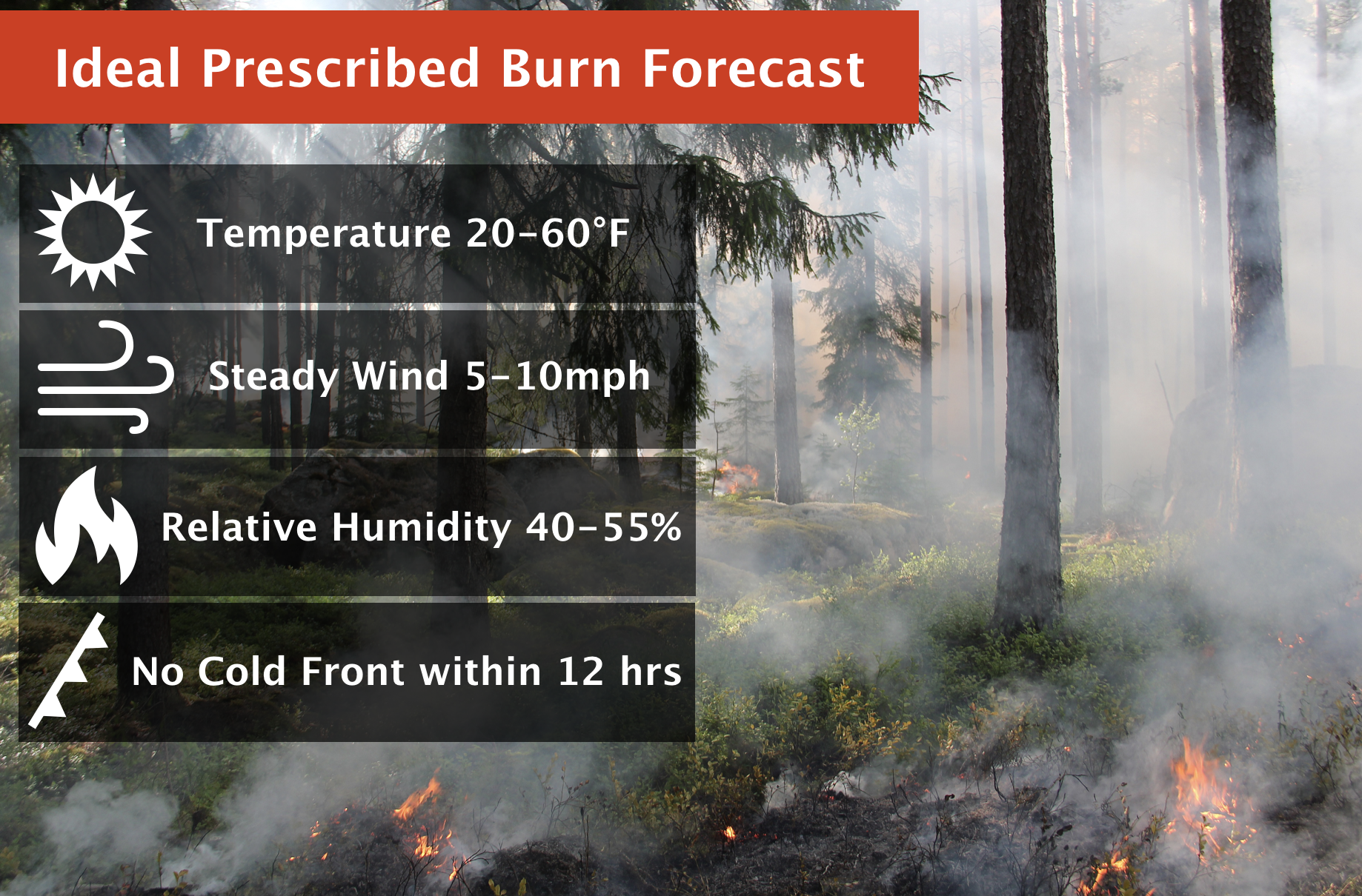 Prescribed Burns: The Good Fires