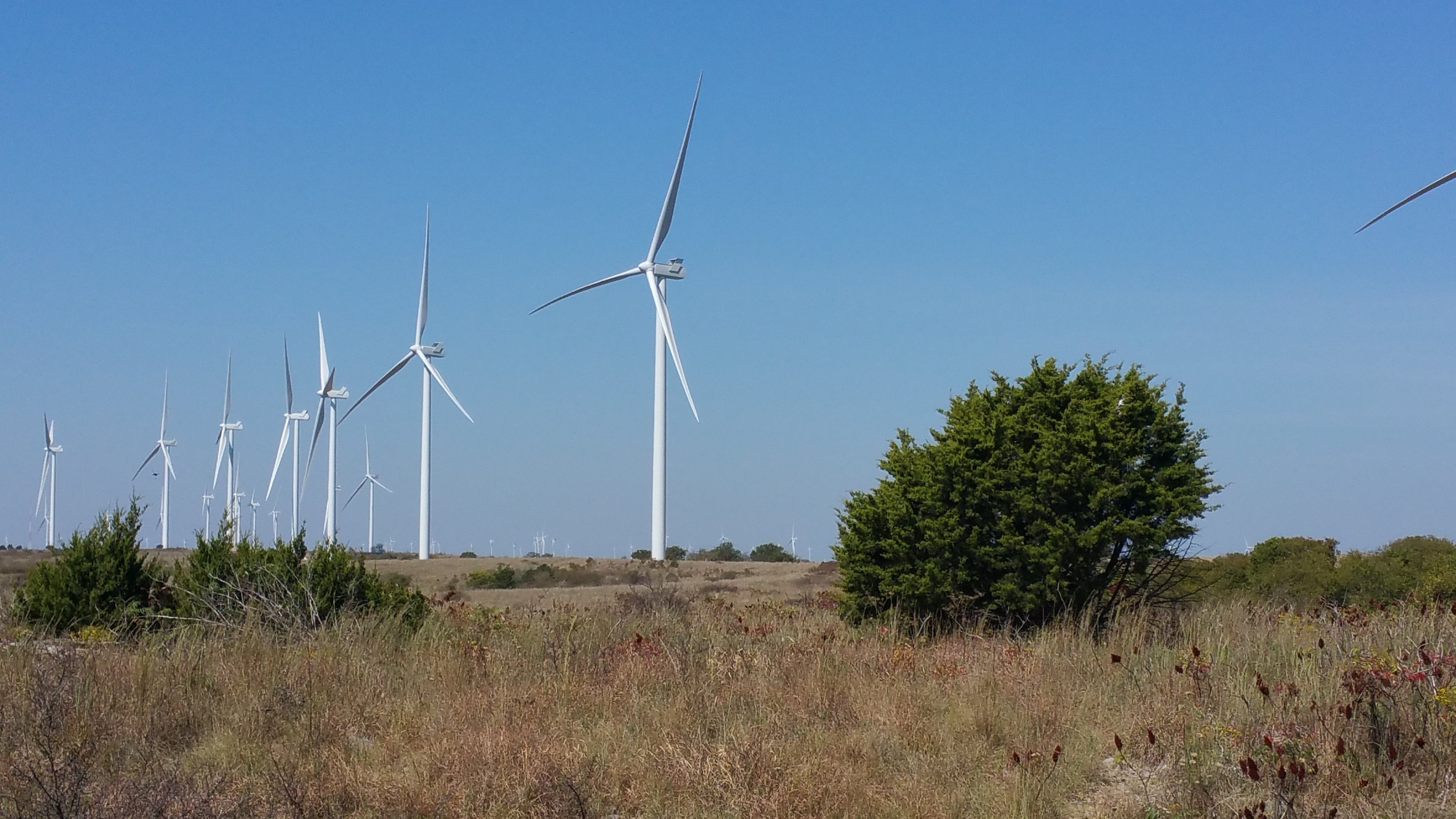A Windy Endeavour: The Arbuckle Wind Farm