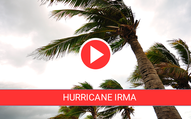 Hurricane Irma Live Feeds
