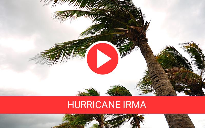 Hurricane Irma Live Feeds