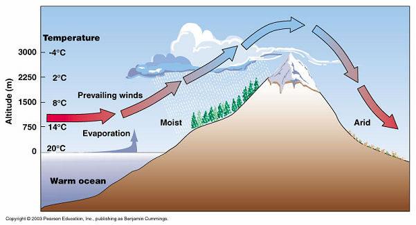 How Do Mountains Affect Precipitation?