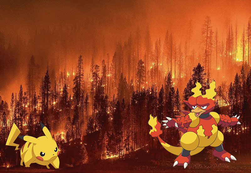 Battle Between Pikachu and Magmar Sparks Wildfire in California