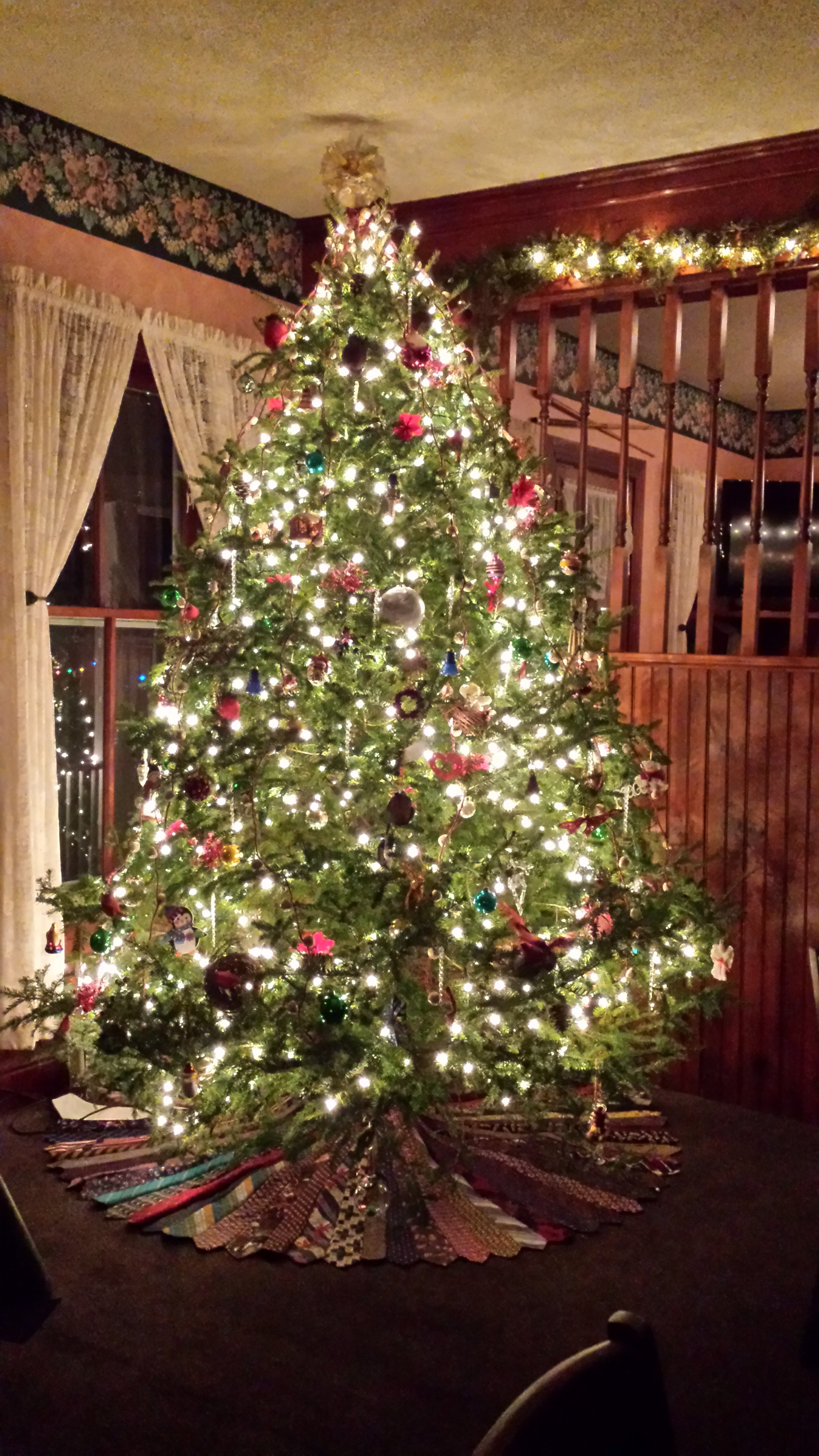 Do You Know What Kind of Weather Your Christmas Tree Has Experienced?
